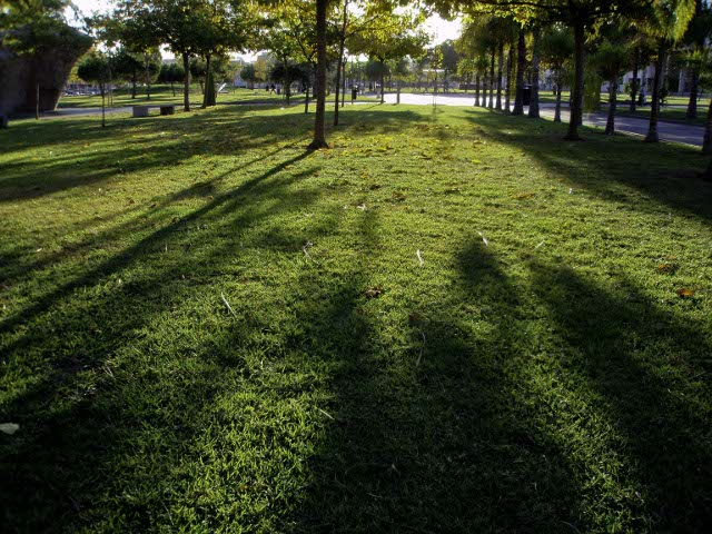 Jardín de Vera de la UPV